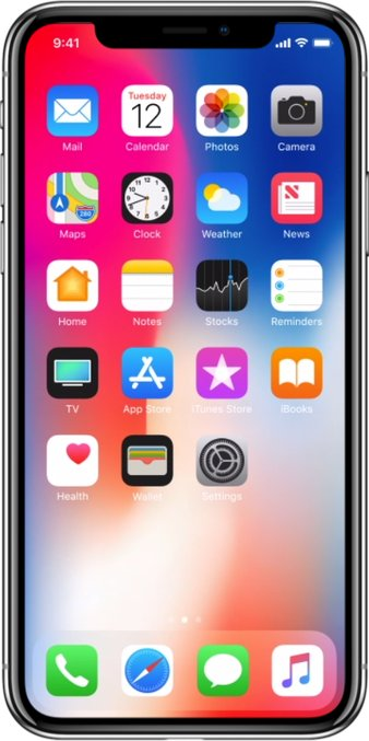 Apple iPhone X A1865 TD-LTE 256GB / iPhone Ten  (Apple iPhone 10,3)