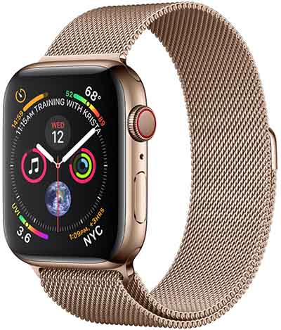 Apple Watch Series 4 40mm TD-LTE Global A2007  (Apple Watch 4,3)